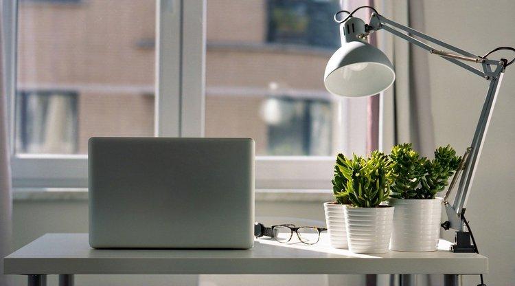 Работа на удаленке плохо влияет на эффективность – Google